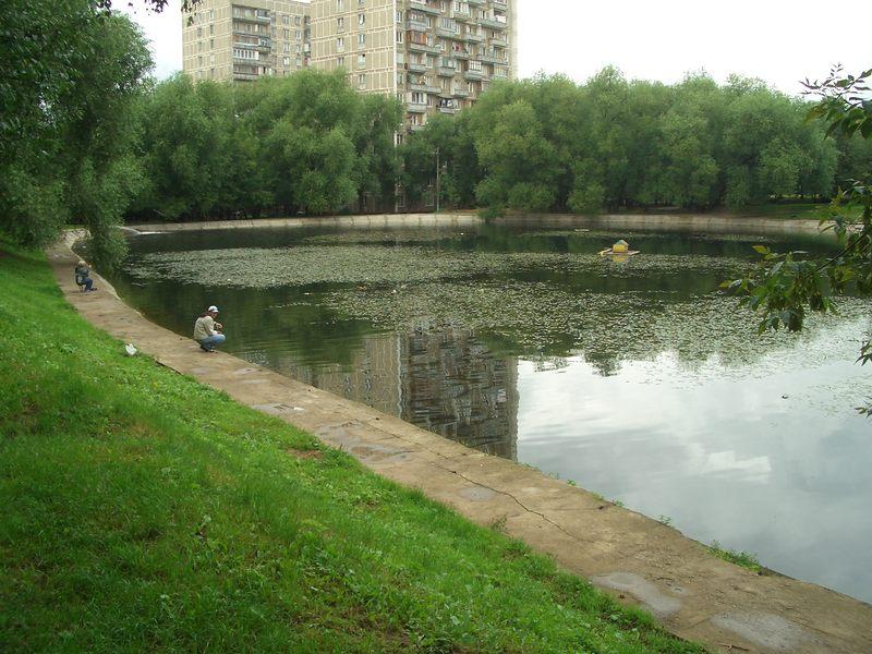 мичуринский пруд новопеределкино рыбалка