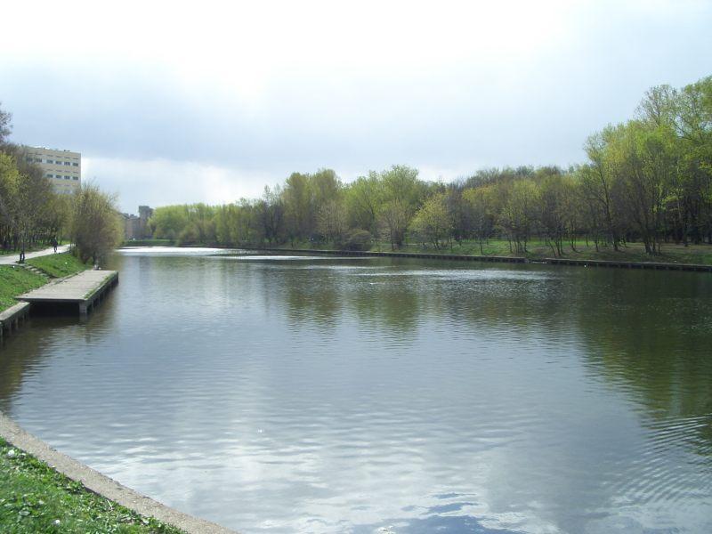 владимирский пруд шоссе энтузиастов рыбалка